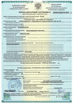 Образец фитосанитарного сертификата